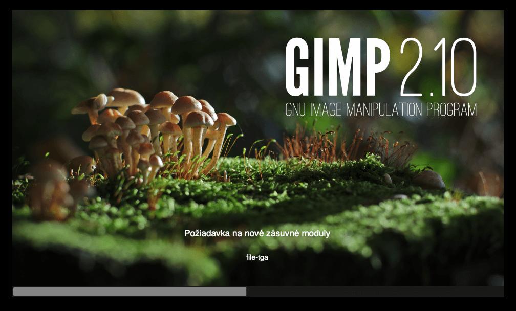 Gimp Start